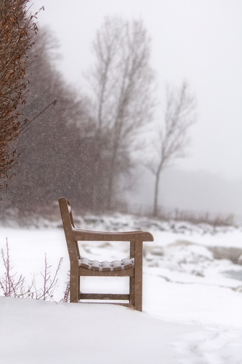 Chair in Winter